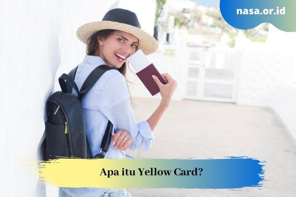 Apa itu Yellow Card? dalam Dunia Penerbangan