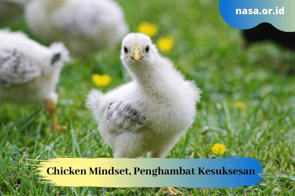 Chicken Mindset, Pola Pikir yang Menghambat Kesuksesan