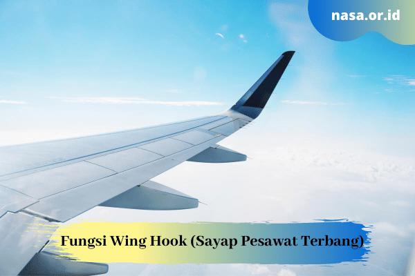 Fungsi Wing Hook (Sayap Pesawat Terbang)